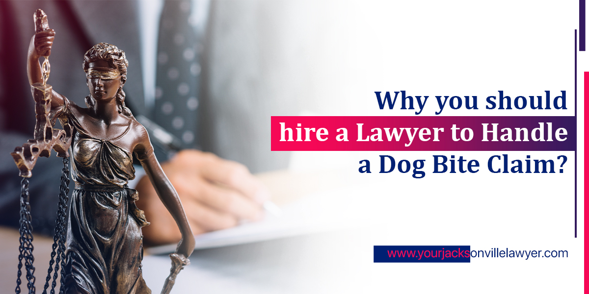 lawyers for dog bites
